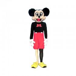 Disfarce de Mickey